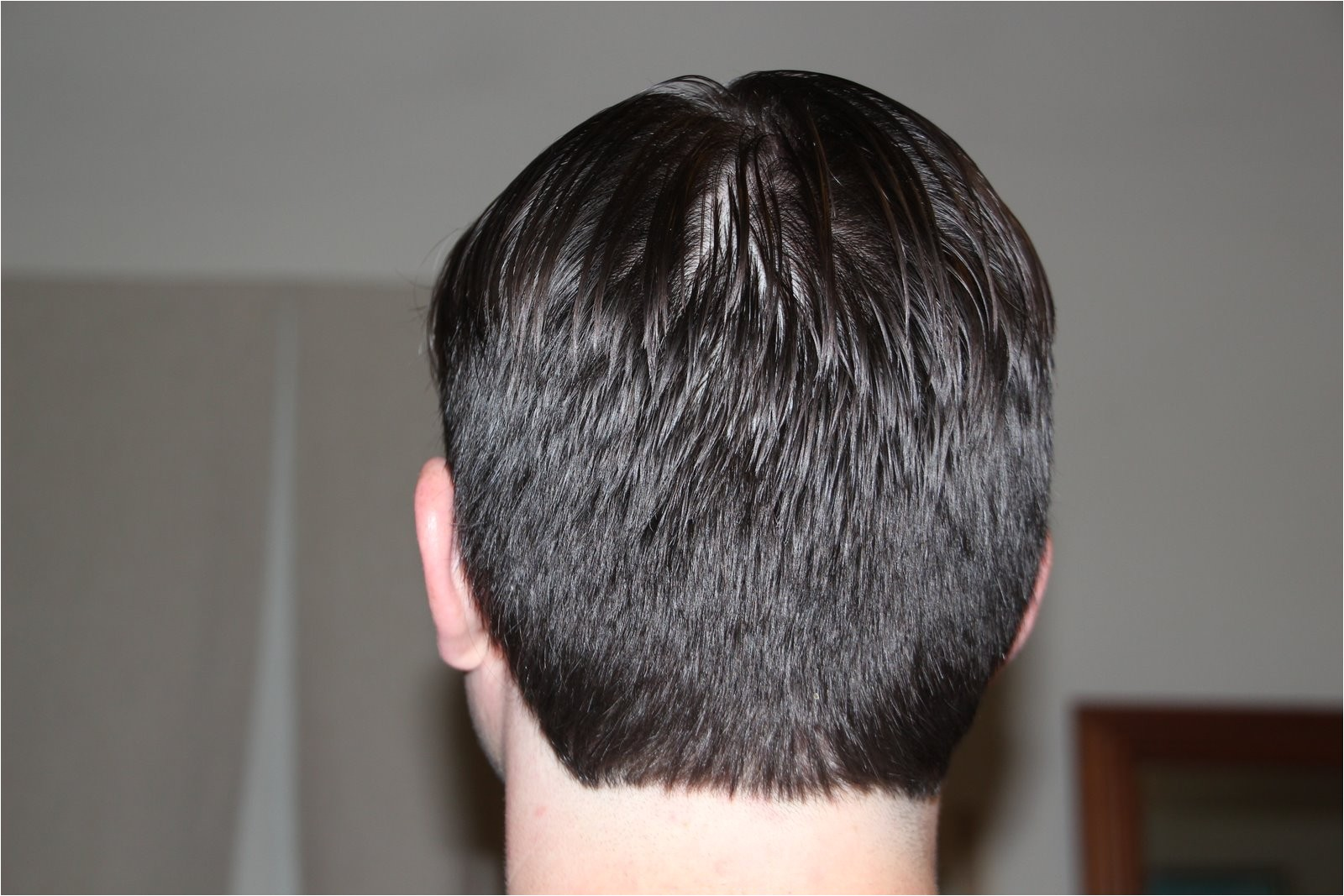 Mens Haircuts Back Of Head Mens Hairstyles Rear View tops 2016 Hairstyle