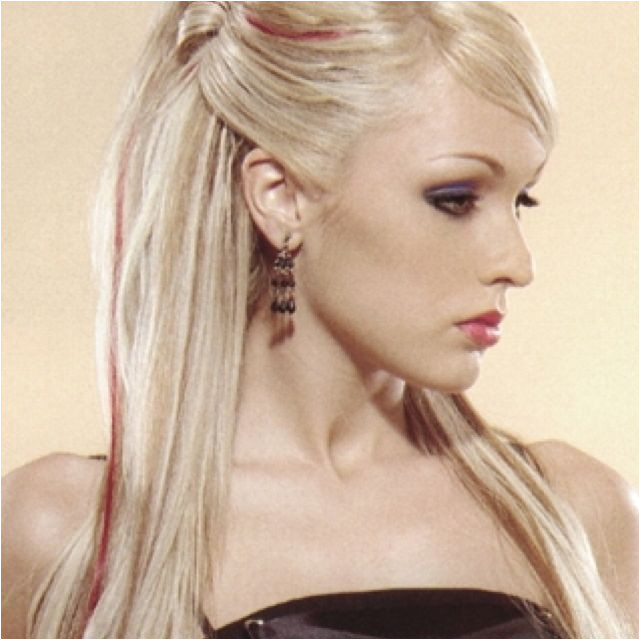 Straightened Hairstyles Half Up Hair Half Up Do with Straight Hair Sweet 16 Party Ideas