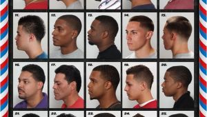 Black Men Haircuts Styles Chart the Barber Hairstyle Guide Poster for Black Men