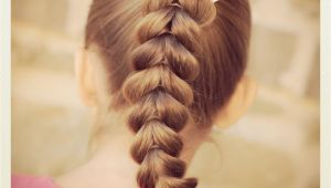 Cute Hairstyles to Do with Braids Pull Through Braid Easy Hairstyles