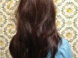 Diy Layered Bob Haircut Diy Layered Haircut