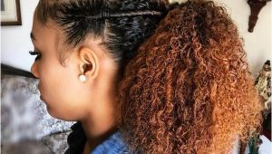 Easy Hairstyles for Natural Hair for African Americans Easy Natural Hairstyles Simple Black Hairstyles for