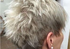 Easy Hairstyles for Short Thin Hair Video 60 Gorgeous Gray Hair Styles Hair Pinterest