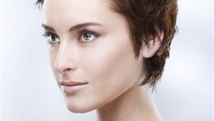 Easy Punk Hairstyles Punk Hairstyles for Women Stylish Punk Hair S