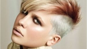 Easy to Do Punk Rock Hairstyles Short Punk Rock Hairstyles for Women Ragan S Hair