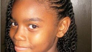 Girl Braided Hairstyles Pictures Black Girl Braids Hairstyles