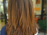 Hair Cuts Dark Brown Highlight Hair Cut In Accordance with Amazing Punjabi Hairstyle 0d