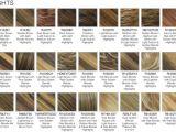 Hairstyles Auburn Highlights Hair Colour Ideas with Amusing Medium Blonde Hair Media Cache Ec0