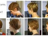 Hairstyles for Growing Out Pixie Great Visual Of Monthly Interim Styles Between A Pixie and A Bob