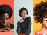 Hairstyles for Short 4c Hair Type Know Your Hair Type Type 4 Hair