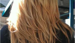 Hairstyles Razor Cut for Long Hair Layered Razor Cut Hairstyle Back View for Long Hair