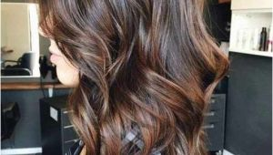 Hairstyles with Highlights for Brunettes Brunette Hair Color with Highlights Luxury Short Hairstyles with