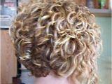 Inverted Bob Haircut Curly Hair Short Natural Curly Hairstyles
