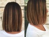 One Length Bob Haircuts 25 Best Ideas About E Length Bobs On Pinterest