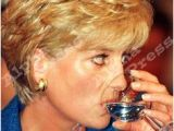 Princess Diana Hairstyles Short 124 Best Princess Diana Hairstyles Images