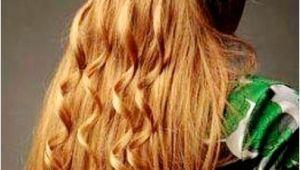 Renaissance Wedding Hairstyles Impressive Renaissance Hairstyles the Haircut Web