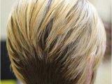 Short Inverted Bob Haircut Back View 15 Back View Inverted Bob