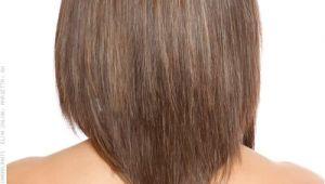 V Shaped Bob Haircut Hair Tutorial V Back Stylish Medium Cut Back View
