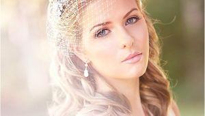 Vintage Wedding Hairstyles with Birdcage Veil Vintage Wedding Birdcage Veil Inspiration