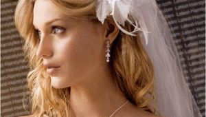 Wedding Hairstyles for Long Hair Down with Veil Romantic Bridal Hairstyles 365greetings