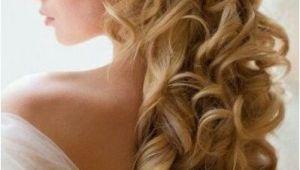 Wedding Hairstyles Half Up with Tiara and Veil Pin by Nectaria Kordan On Bridal Hair Pinterest