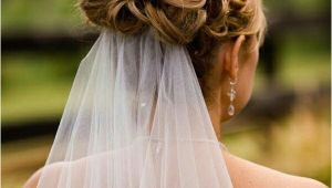 Wedding Hairstyles Veil Underneath Wedding Updo with Veil Underneath Wedding Hair